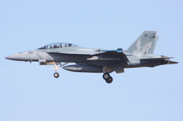 Ryan-airさんが、ヴェンチュラ・カウンティ=ポイントムグ海軍航空ステーションで撮影したアメリカ海軍 F/A-18F Super Hornetの航空フォト(飛行機 写真・画像)