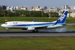 B14A3062Kさんが、伊丹空港で撮影した全日空 737-881の航空フォト(飛行機 写真・画像)
