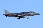 かみゅんずさんが、厚木飛行場で撮影したアメリカ海兵隊 AV-8B(R) Harrier II+の航空フォト(写真)
