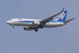 lonely-wolfさんが、伊丹空港で撮影した全日空 737-881の航空フォト(飛行機 写真・画像)