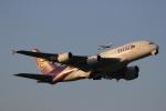 さとちんさんが、成田国際空港で撮影したタイ国際航空 A380-841の航空フォト(写真)