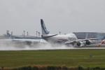 RAOUさんが、成田国際空港で撮影した日本貨物航空 747-8KZF/SCDの航空フォト(写真)
