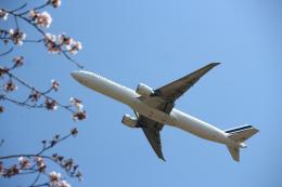 夏奈さんが、成田国際空港で撮影したエールフランス航空 777-328/ERの航空フォト(写真)