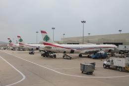 だいすけさんが、ベイルート・ラフィク・ハリリ国際空港で撮影したミドル・イースト航空 A321-231の航空フォト(飛行機 写真・画像)