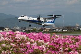 GNPさんが、松山空港で撮影したANAウイングス DHC-8-402Q Dash 8の航空フォト(写真)