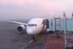 KKiSMさんが、スカルノハッタ国際空港で撮影した全日空 787-8 Dreamlinerの航空フォト(写真)