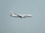 BeyondWorksさんが、羽田空港で撮影した日本航空 737-846の航空フォト(写真)