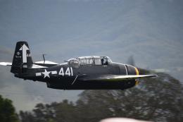 brasovさんが、イラワラ・リージョナル空港で撮影したアメリカ海軍 TBM-3 Avengerの航空フォト(飛行機 写真・画像)