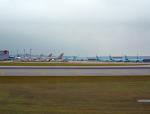tsubasa0624さんが、仁川国際空港で撮影したアシアナ航空 747-48EF/SCDの航空フォト(写真)