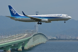 qooさんが、関西国際空港で撮影した全日空 737-881の航空フォト(飛行機 写真・画像)