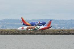 小弦さんが、オークランド国際空港で撮影したサウスウェスト航空 737-3H4の航空フォト(飛行機 写真・画像)