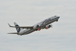 小弦さんが、オークランド国際空港で撮影したアラスカ航空 737-990/ERの航空フォト(飛行機 写真・画像)