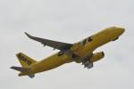 小弦さんが、オークランド国際空港で撮影したスピリット航空 A320-232の航空フォト(飛行機 写真・画像)