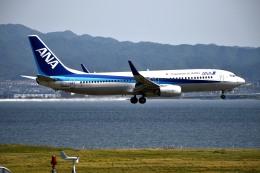 we love kixさんが、関西国際空港で撮影した全日空 737-881の航空フォト(飛行機 写真・画像)