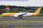 Chofu Spotter Ariaさんが、成田国際空港で撮影したスクート (〜2017) 787-9の航空フォト(写真)