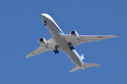 romyさんが、ボーイングフィールドで撮影した全日空 787-9の航空フォト(飛行機 写真・画像)
