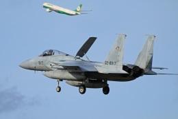 航空フォト:02-8917 航空自衛隊 F-15J Eagle