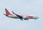 じーく。さんが、成田国際空港で撮影したティーウェイ航空 737-8Q8の航空フォト(飛行機 写真・画像)