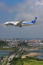 てるやっちさんが、那覇空港で撮影した全日空 787-8 Dreamlinerの航空フォト(写真)