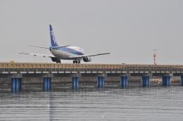 small marshさんが、松山空港で撮影したANAウイングス 737-5L9の航空フォト(写真)