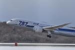 small marshさんが、新千歳空港で撮影した全日空 787-8 Dreamlinerの航空フォト(写真)