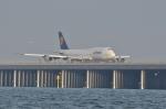 small marshさんが、羽田空港で撮影したルフトハンザドイツ航空 747-830の航空フォト(写真)