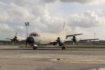 とらとらさんが、シントラ航空基地で撮影したポルトガル空軍 P-3C Orionの航空フォト(写真)