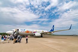 m-takagiさんが、福島空港で撮影した全日空 737-881の航空フォト(飛行機 写真・画像)