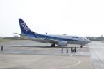 しかばねさんが、石垣空港で撮影した全日空 737-781の航空フォト(写真)