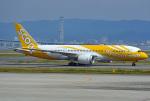 tsubasa0624さんが、関西国際空港で撮影したスクート (〜2017) 787-8 Dreamlinerの航空フォト(写真)