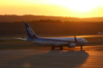 westtowerさんが、釧路空港で撮影した全日空 737-881の航空フォト(写真)