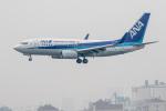 xingyeさんが、青島流亭国際空港で撮影した全日空 737-781の航空フォト(写真)