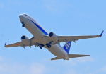 hiro801さんが、米子空港で撮影した全日空 737-881の航空フォト(写真)