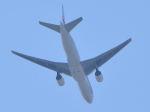 canaanさんが、下志津駐屯地で撮影した日本航空 777-246の航空フォト(写真)
