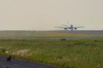 サボリーマンさんが、松山空港で撮影したANAウイングス 737-5L9の航空フォト(写真)