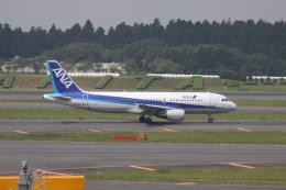 しかばねさんが、成田国際空港で撮影した全日空 A320-214の航空フォト(飛行機 写真・画像)