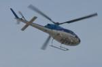 ヘリオスさんが、東京ヘリポートで撮影したエクセル航空 AS355N Ecureuil 2の航空フォト(写真)
