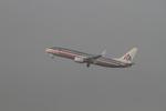 matsuさんが、ロサンゼルス国際空港で撮影したアメリカン航空 737-823の航空フォト(飛行機 写真・画像)