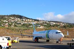 とらとらさんが、マデイラ空港で撮影したトランサヴィア・フランス 737-8GJの航空フォト(飛行機 写真・画像)