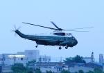 じーく。さんが、名古屋飛行場で撮影したアメリカ海兵隊 VH-3D Sea King (S-61B)の航空フォト(飛行機 写真・画像)