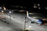 中部国際空港 - Chubu Centrair International Airport [NGO/RJGG]で撮影されたアメリカ空軍 - United States Air Forceの航空機写真