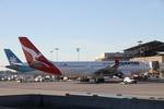 matsuさんが、ロサンゼルス国際空港で撮影したカンタス航空 A330-203の航空フォト(飛行機 写真・画像)