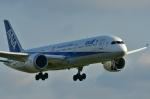 kaz-bbさんが、福岡空港で撮影した全日空 787-9の航空フォト(写真)