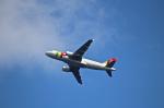 とらとらさんが、マデイラ空港で撮影したTAPポルトガル航空 A319-111の航空フォト(飛行機 写真・画像)