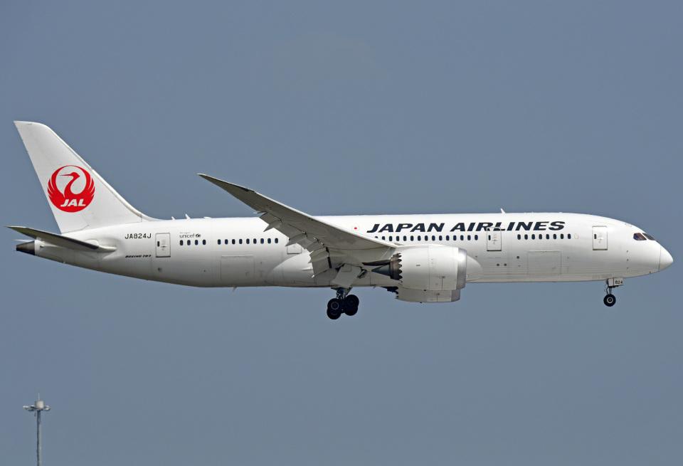 tsubasa0624さんの日本航空 Boeing 787-8 Dreamliner (JA842J) 航空フォト