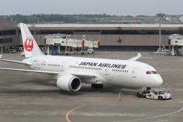 鶴の旅人さんが、成田国際空港で撮影した日本航空 787-8 Dreamlinerの航空フォト(飛行機 写真・画像)