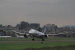 みそらさんが、台北松山空港で撮影した全日空 787-8 Dreamlinerの航空フォト(飛行機 写真・画像)
