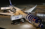 やまけんさんが、羽田空港で撮影した全日空 787-9の航空フォト(飛行機 写真・画像)