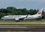 じーく。さんが、高松空港で撮影した日本航空 737-846の航空フォト(飛行機 写真・画像)