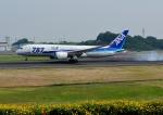 じーく。さんが、高松空港で撮影した全日空 787-8 Dreamlinerの航空フォト(飛行機 写真・画像)